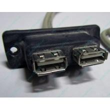 USB-разъемы HP 451784-001 (459184-001) для корпуса HP 5U tower (Монино)