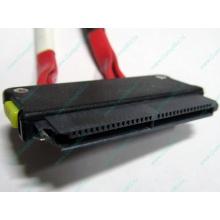 SATA-кабель для корзины HDD HP 451782-001 459190-001 для HP ML310 G5 (Монино)